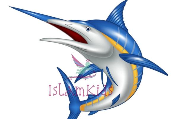 أسماك المارلين كارتون للاطفال