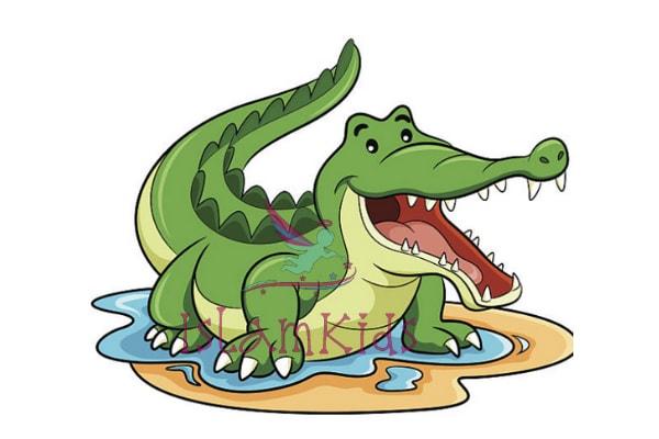 التمساح كرتون للاطفال