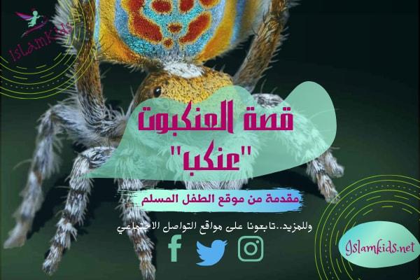 قصة العنكبوت بالهجة المصرية